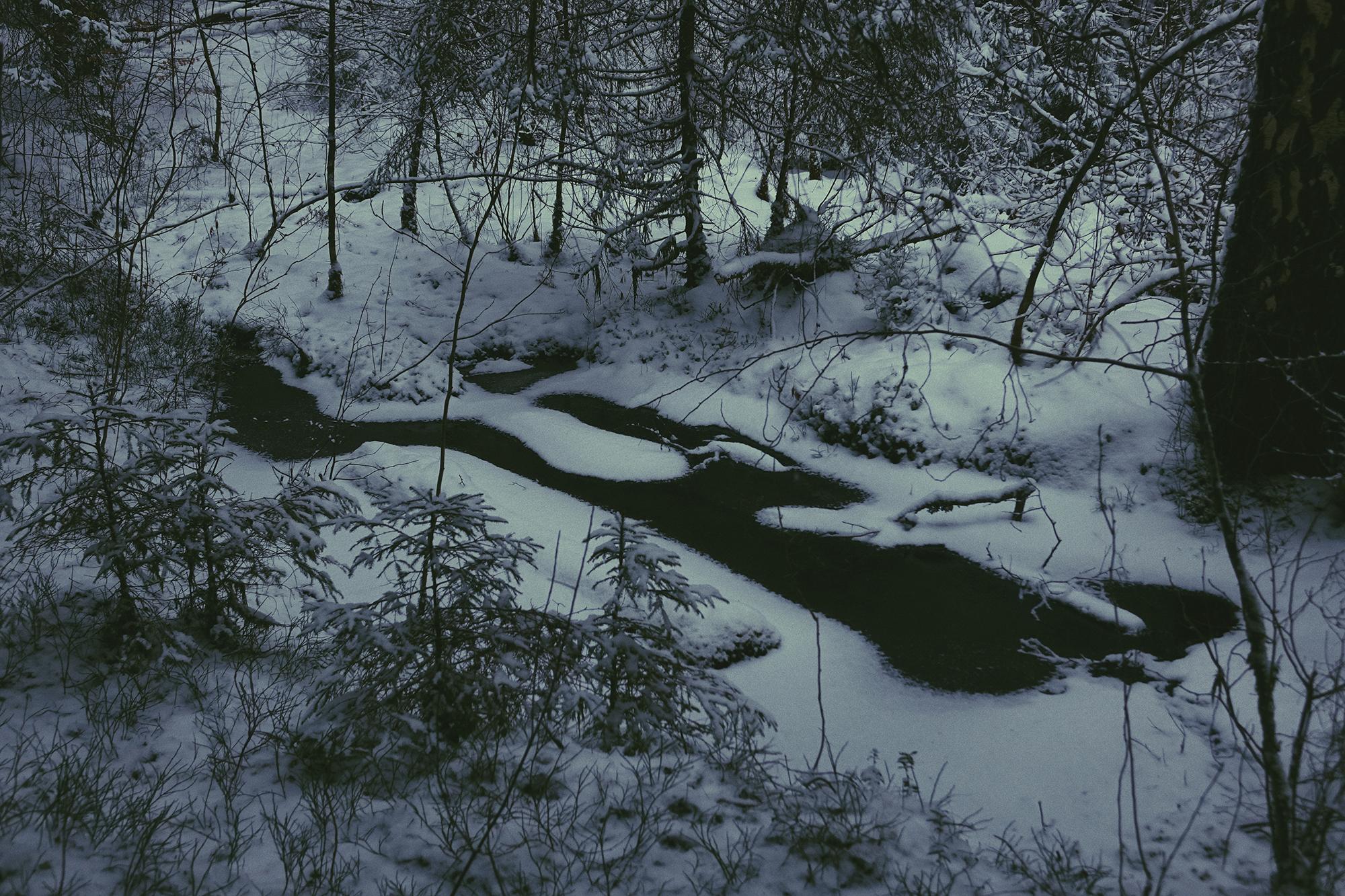 February 21st Series, Margarita Sheremet Photography